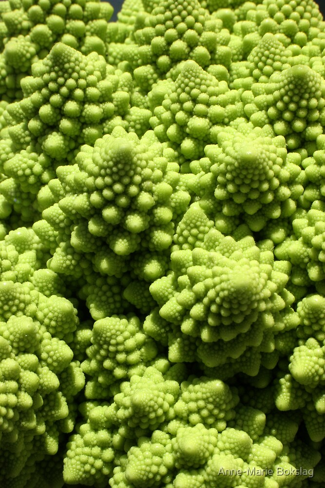 Green cauliflower by Anne-Marie Bokslag