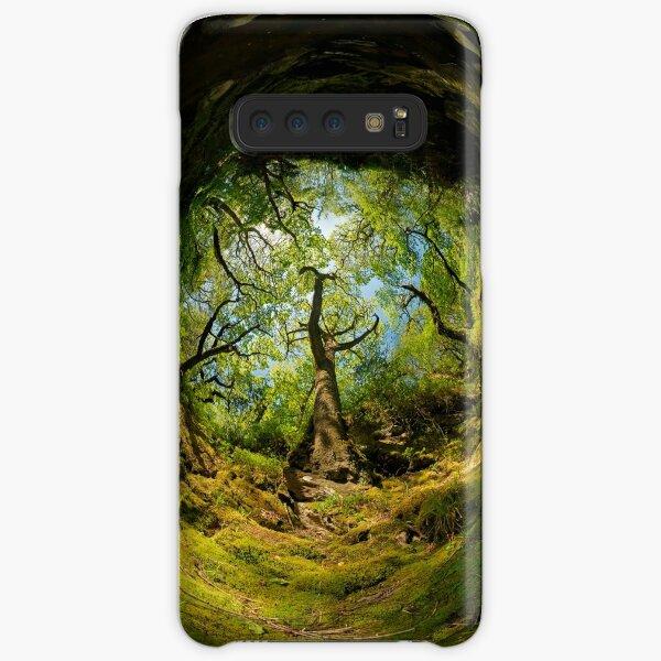 Ness Glen, Mystical Irish Wood Samsung Galaxy Snap Case