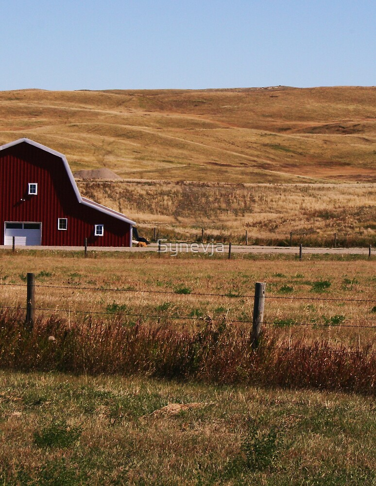 The Big Red Barn by Synevja