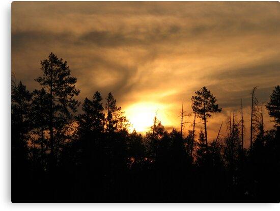 Sunset smokey by goddessteri211