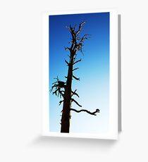 LONEY TREE Greeting Card