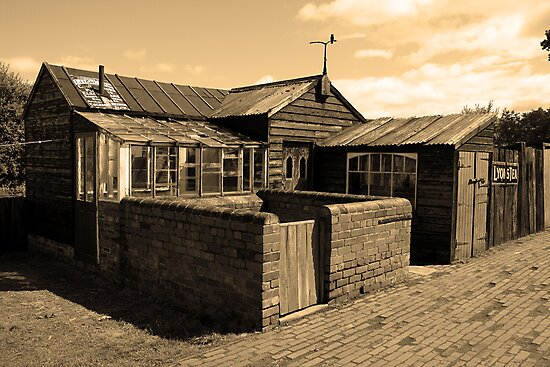 Times Gone By - The Sheds by Dave Law