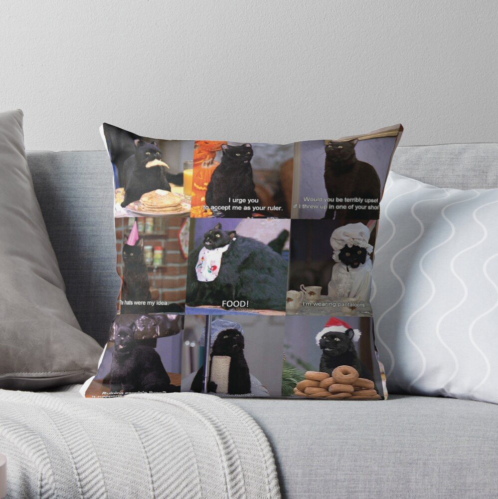 Musings of Salem Throw Pillow