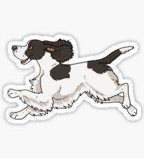 English cocker spaniel (black & white) Sticker