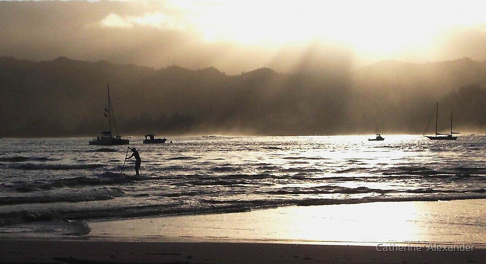 Dusk at Hanalei Bay by Catherine  Alexander