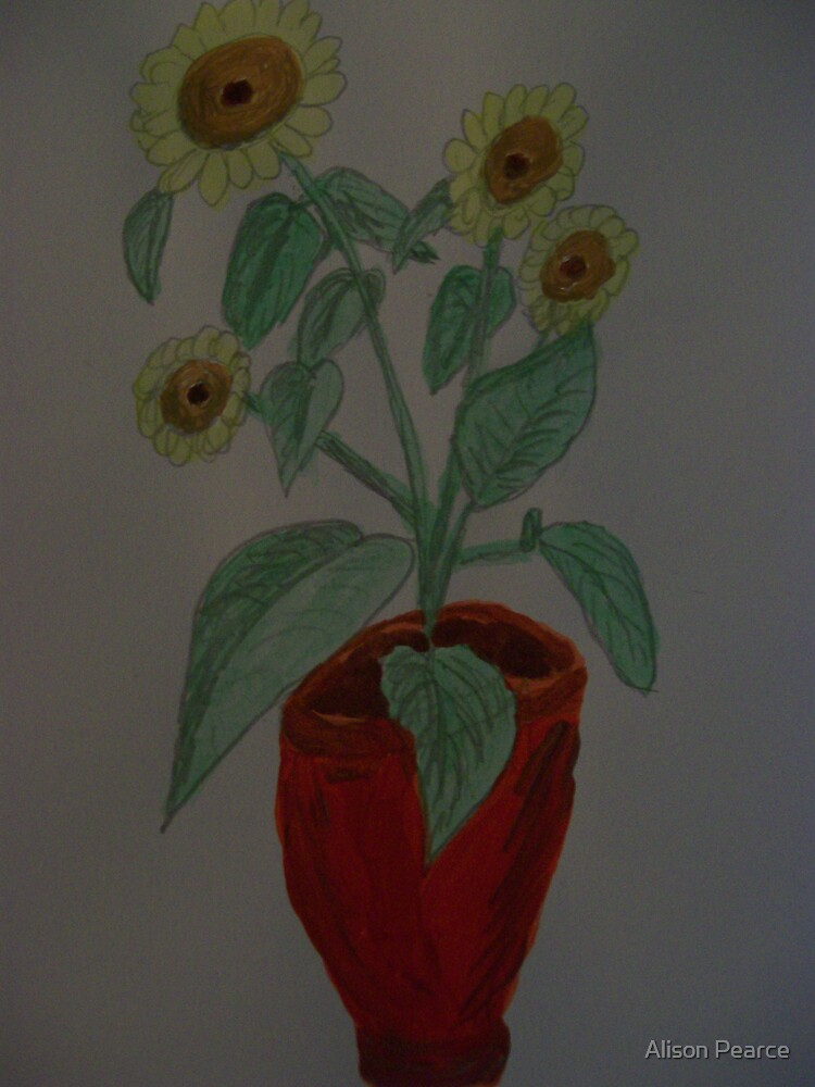 A Pot of Sunshine by Alison Pearce