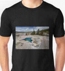 Blue Star Spring T-Shirt