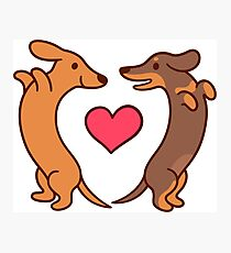 Cute cartoon dachshunds in love Photographic Print