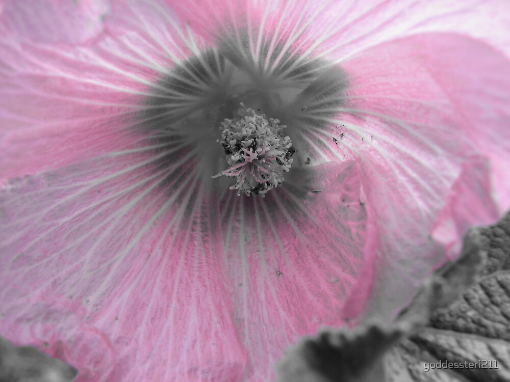 Permanent pink by goddessteri211