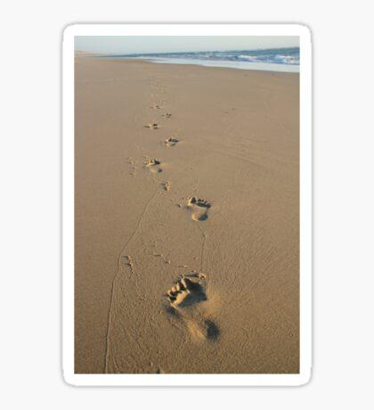 Footprints Sticker