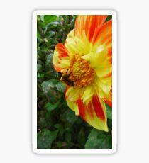 Bumble bee Flower Sticker