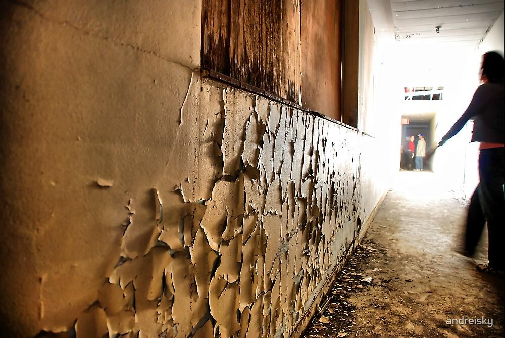 Corridor (Biennale of Sydney '08) by andreisky