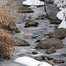 Lovely stream in the winter by toots