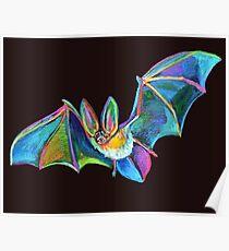 Cute Halloween Bat Named Warren Batty Poster