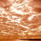 Clouds at Dusk, Brighton Beach by Roz McQuillan