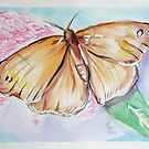 Butterfly 4 by Loretta Nash