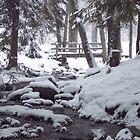 Winter Bridge by ChereeCheree