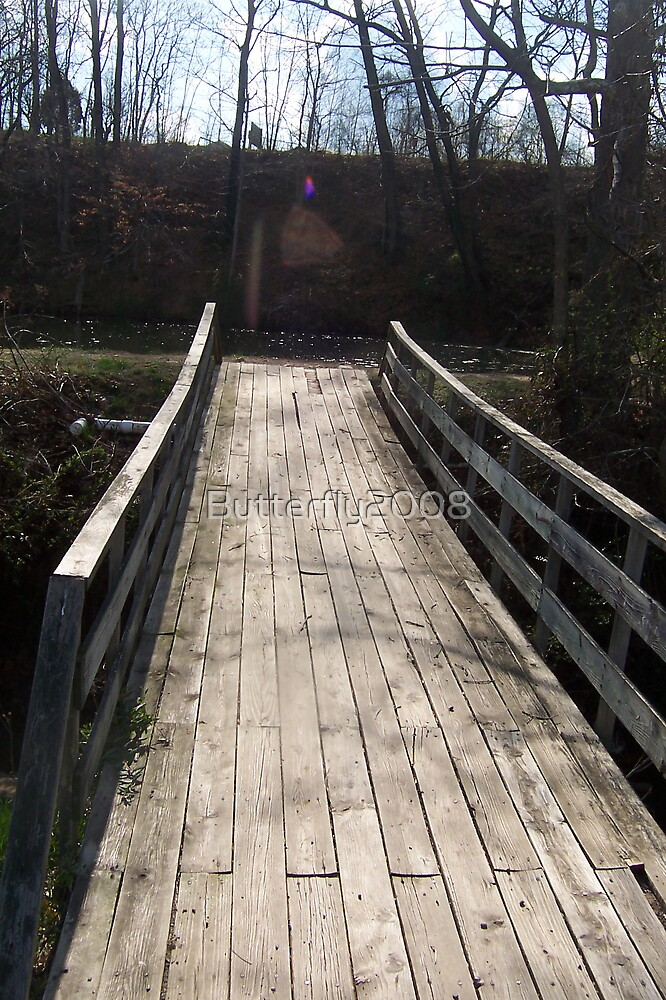 Wooden Path Bridge by Butterfly2008