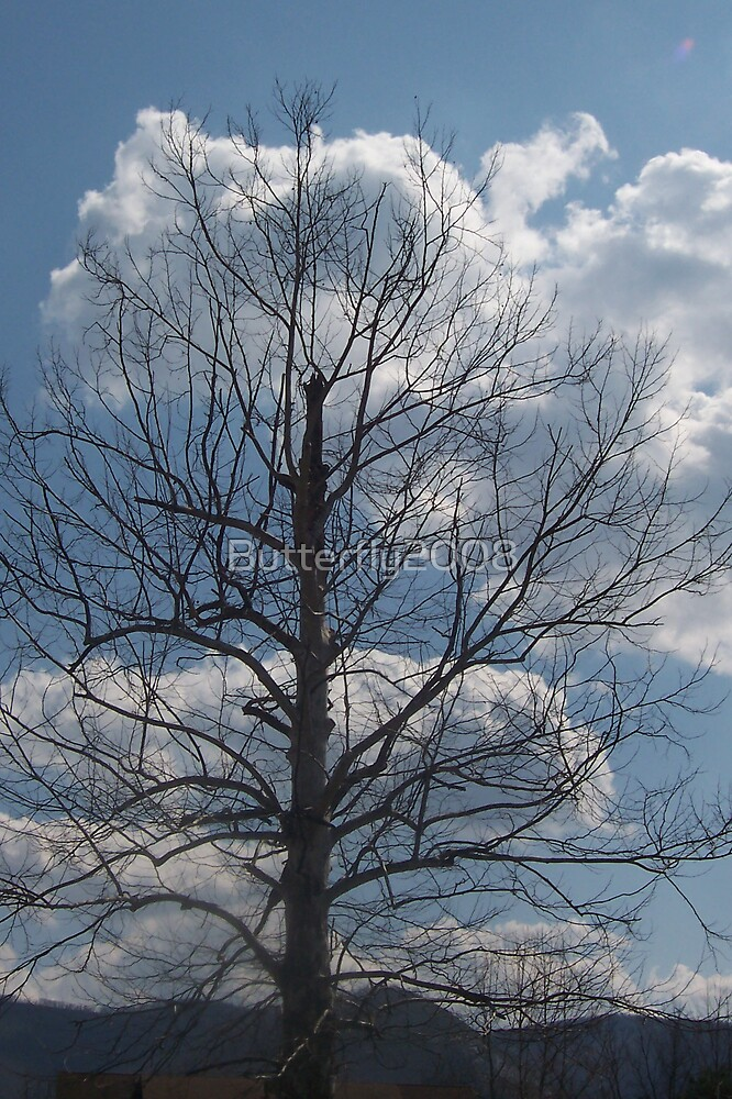 Blue Sky Tree by Butterfly2008