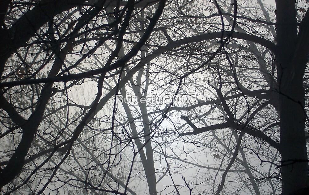 Tree Fog by Butterfly2008