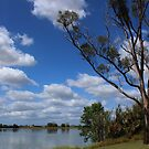 The Mighty Clarence River by myraj