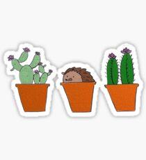 Hedgehog Succulent Sticker