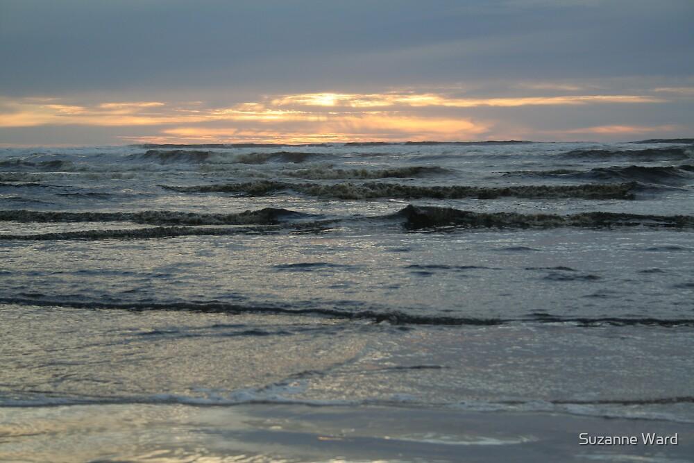 Oceanic sunrise by Suzanne Ward