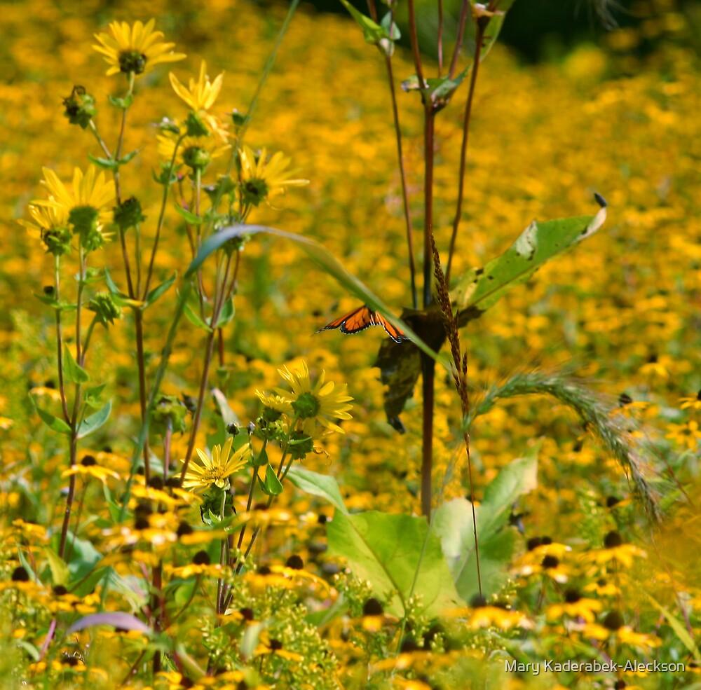 Visit to the Prairie by Mary Kaderabek-Aleckson