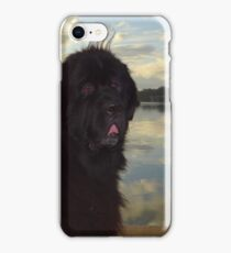 Newfoundland Dog Waterscape iPhone Case/Skin