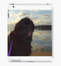 Newfoundland Dog Waterscape iPad Case/Skin