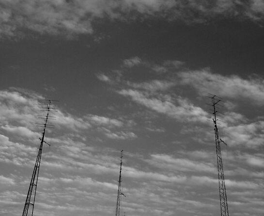 Signal by elizabethrose05
