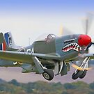 Mustang Scramble - Duxford 2 Crop by Colin  Williams Photography