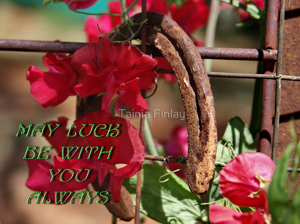 May Luck be With You Always by Tainia Finlay