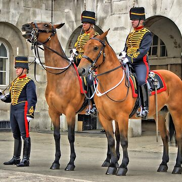 The Queens Life Guard and horses - City of London by RemoKurka