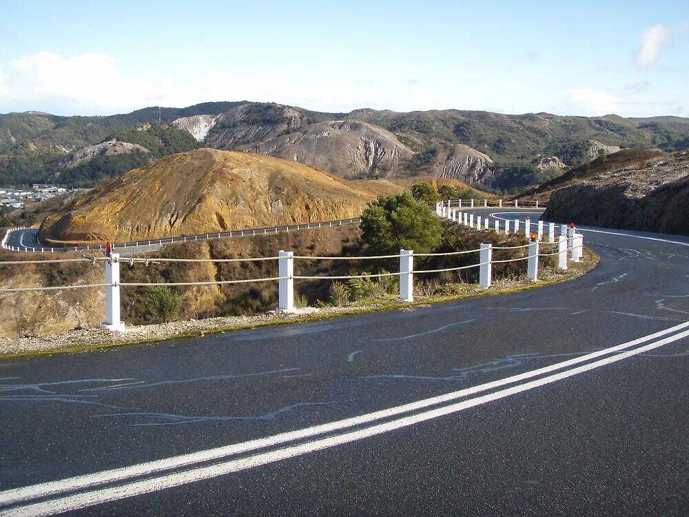 """Queenstown's winding road through the """"golden"""" hills by gaylene"""