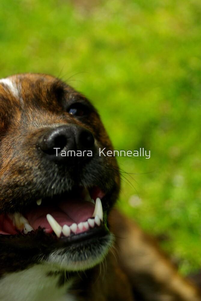 Smiling Delta by Tamara  Kenneally