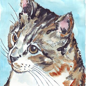 A Tabby superb! by MareeClarkson