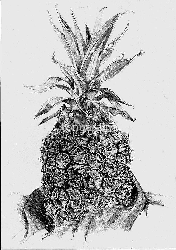 Pinapple in pencil by tonyarama