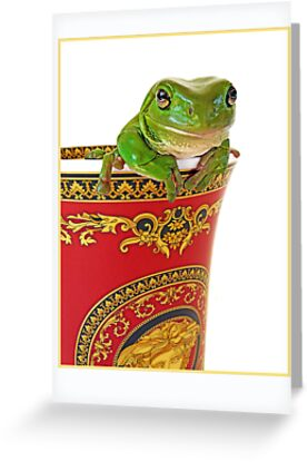Versace frog greeting cards by juliem redbubble versace frog by juliem m4hsunfo