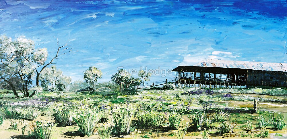 Kinchega Woolshed by Sue Hodge