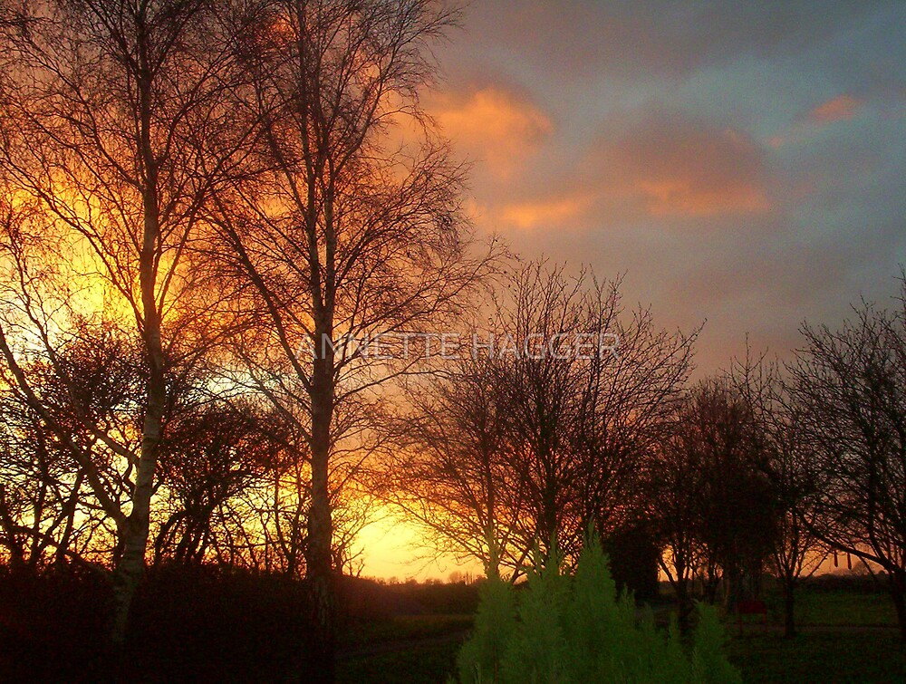 SUNSET 4 METFEILD by ANNETTE HAGGER