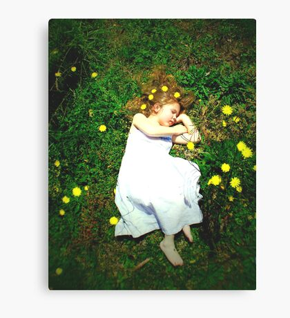 Fairy dreams.... Canvas Print