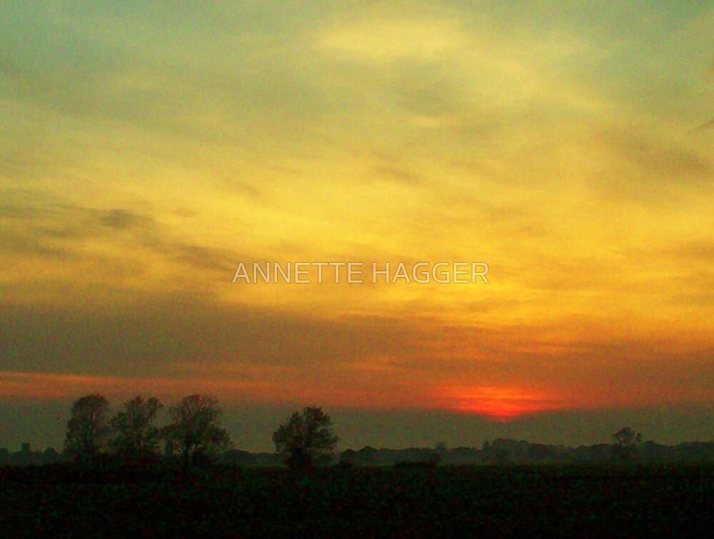 SUNSET 11 METFIELD by ANNETTE HAGGER