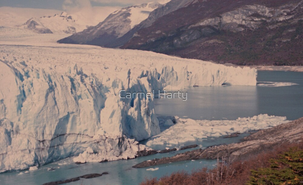 Patagonian Glacier by Carmel Harty