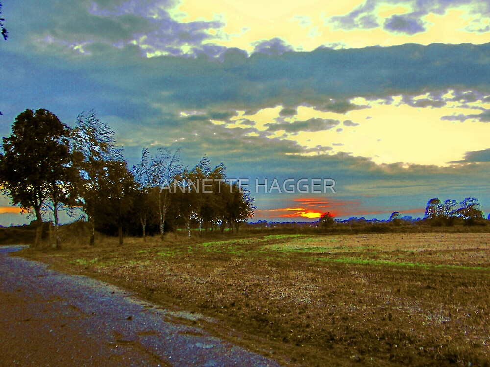 SUNSET 14 METFIELD by ANNETTE HAGGER