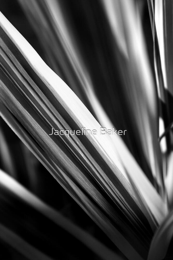 Wild Grass by Jacqueline Baker