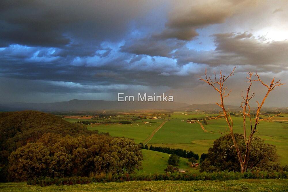 Yarra Valley, Victoria. by Ern Mainka