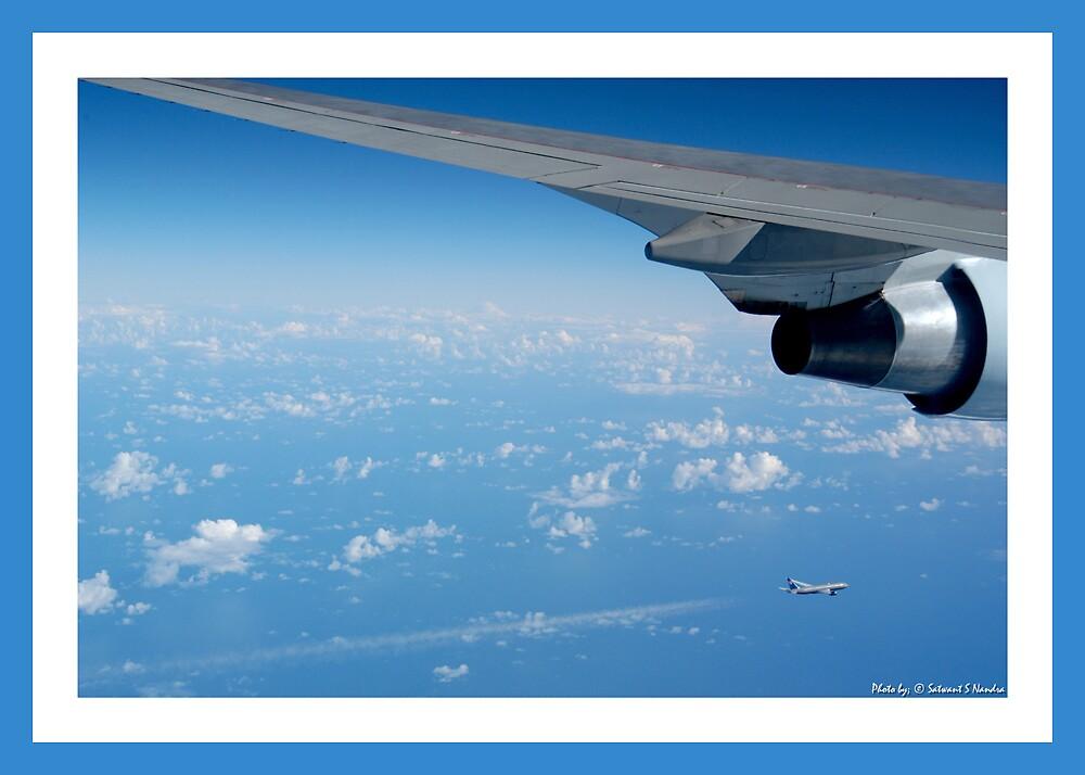 Parallel Flight by satwant