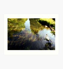River Itchin, Nr. Norris's Bridge  Art Print