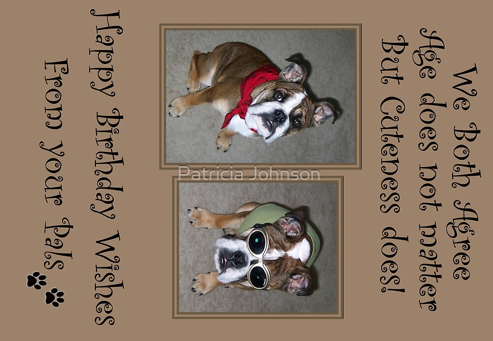 Bull Dog Birthday Card by Patricia Johnson